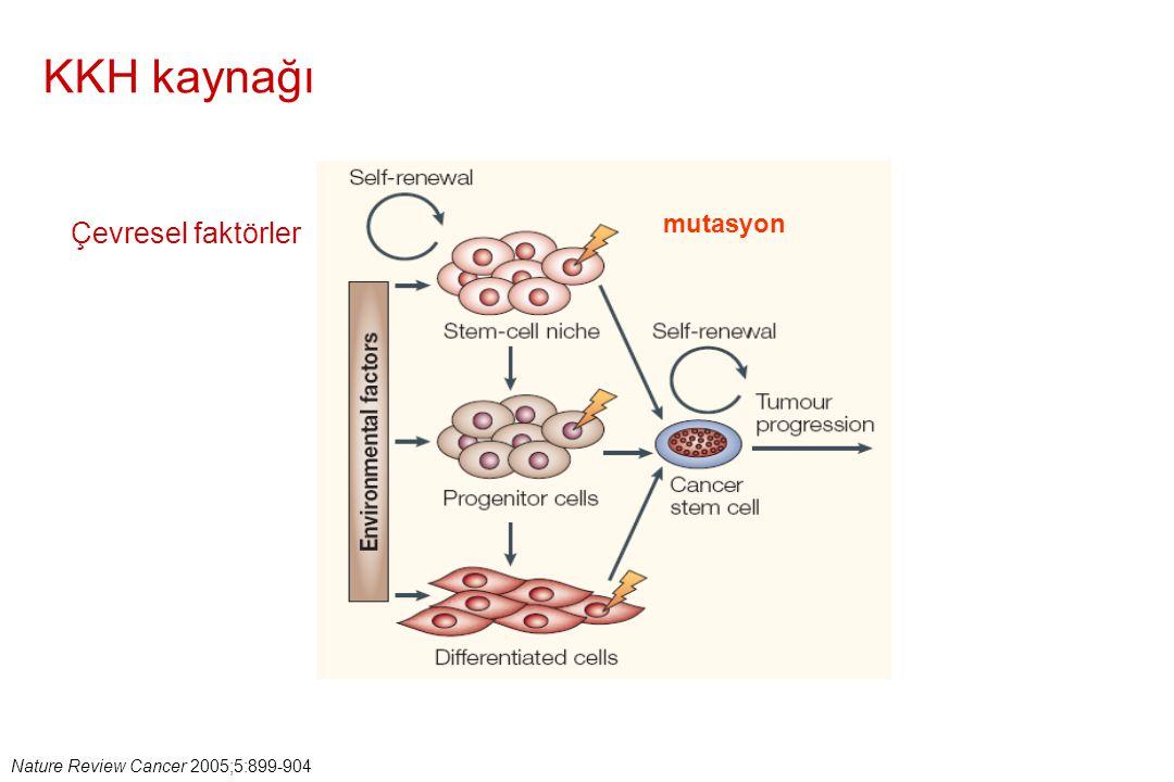 Nature Review Cancer 2005;5:899-904 KKH kaynağı mutasyon Çevresel faktörler