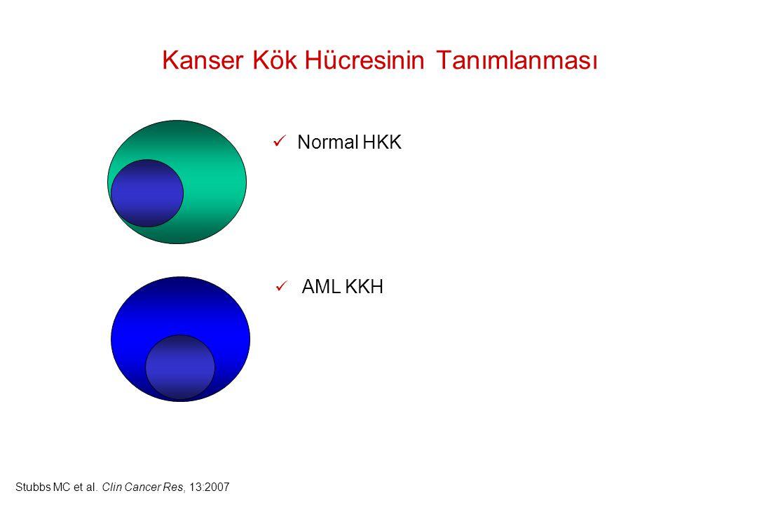 Kanser Kök Hücresinin Tanımlanması Normal HKK AML KKH Stubbs MC et al. Clin Cancer Res, 13:2007