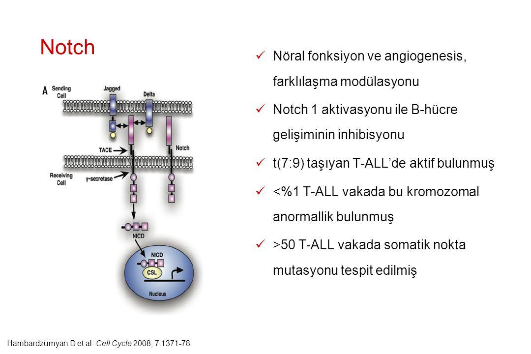 Nöral fonksiyon ve angiogenesis, farklılaşma modülasyonu Notch 1 aktivasyonu ile B-hücre gelişiminin inhibisyonu t(7:9) taşıyan T-ALL'de aktif bulunmu