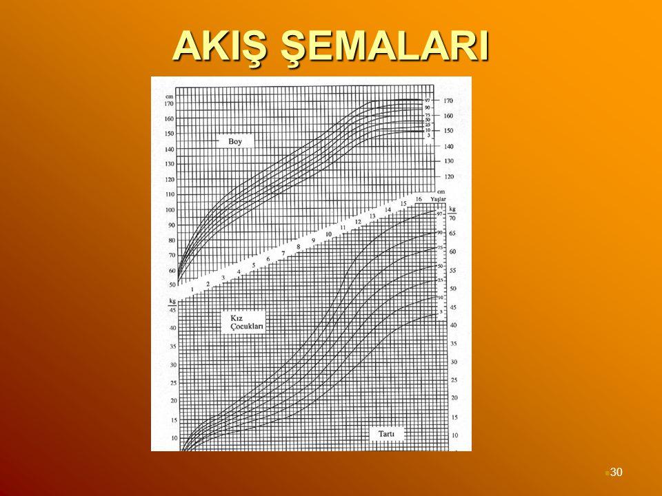 AKIŞ ŞEMALARI 30