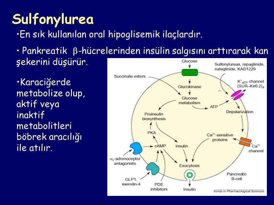 Sulfonylurea En sık kullanılan oral hipoglisemik ilaçlardır. Pankreatik  -hücrelerinden insülin salgısını arttırarak kan şekerini düşürür. Karaciğerd