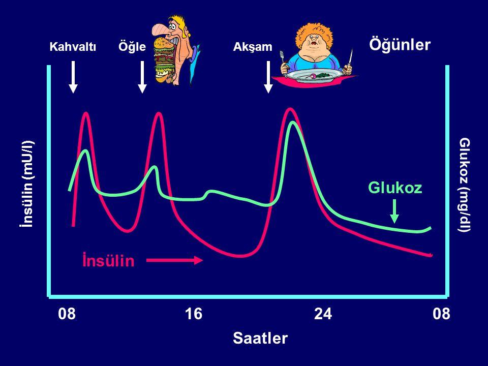 İnsülin (mU/l) Glukoz (mg/dl) Öğünler Saatler 08162408 Glukoz İnsülin KahvaltıÖğle YemeğiAkşam Yemeği