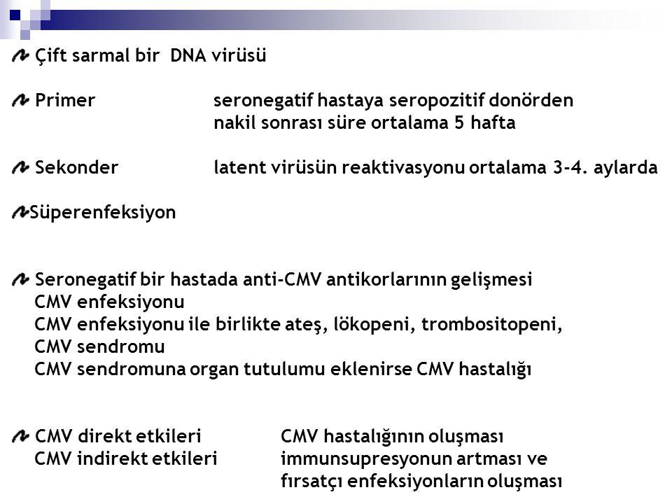 Çift sarmal bir DNA virüsü Primerseronegatif hastaya seropozitif donörden nakil sonrası süre ortalama 5 hafta Sekonder latent virüsün reaktivasyonu ortalama 3-4.