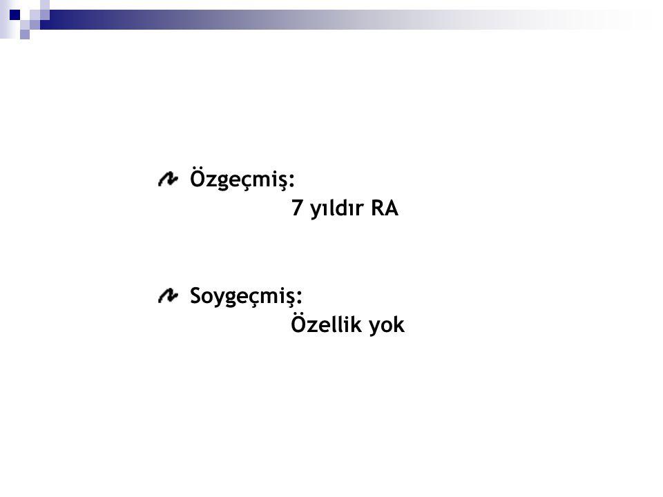 Microskopik görünüm olarak inflamasyon (HE x200) ve intranuclear inklusyonlar (HE x1000)