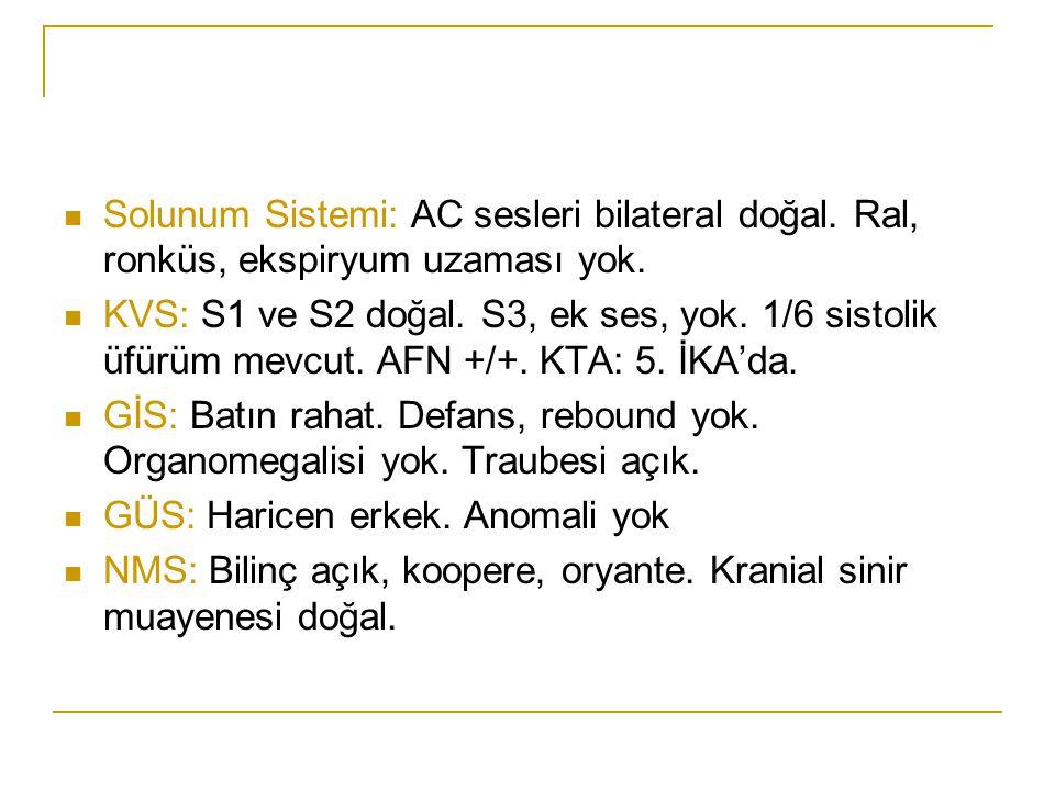 Solunum Sistemi: AC sesleri bilateral doğal. Ral, ronküs, ekspiryum uzaması yok. KVS: S1 ve S2 doğal. S3, ek ses, yok. 1/6 sistolik üfürüm mevcut. AFN