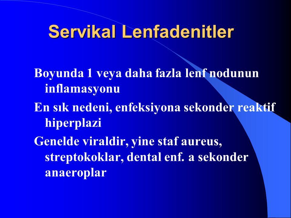 Servikal Lenfadenitler Boyunda 1 veya daha fazla lenf nodunun inflamasyonu En sık nedeni, enfeksiyona sekonder reaktif hiperplazi Genelde viraldir, yi