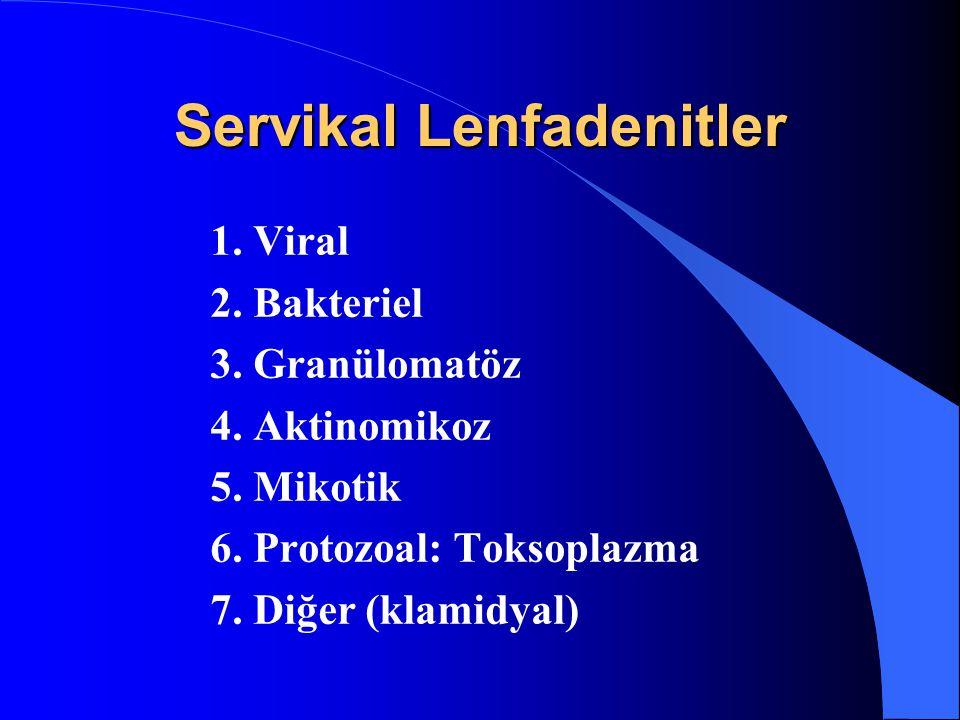 Servikal Lenfadenitler 1. Viral 2. Bakteriel 3. Granülomatöz 4. Aktinomikoz 5. Mikotik 6. Protozoal: Toksoplazma 7. Diğer (klamidyal)