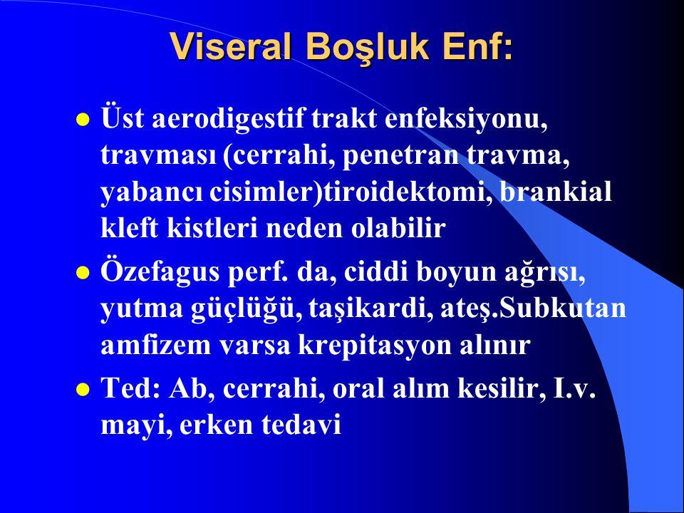Viseral Boşluk Enf: l Üst aerodigestif trakt enfeksiyonu, travması (cerrahi, penetran travma, yabancı cisimler)tiroidektomi, brankial kleft kistleri n