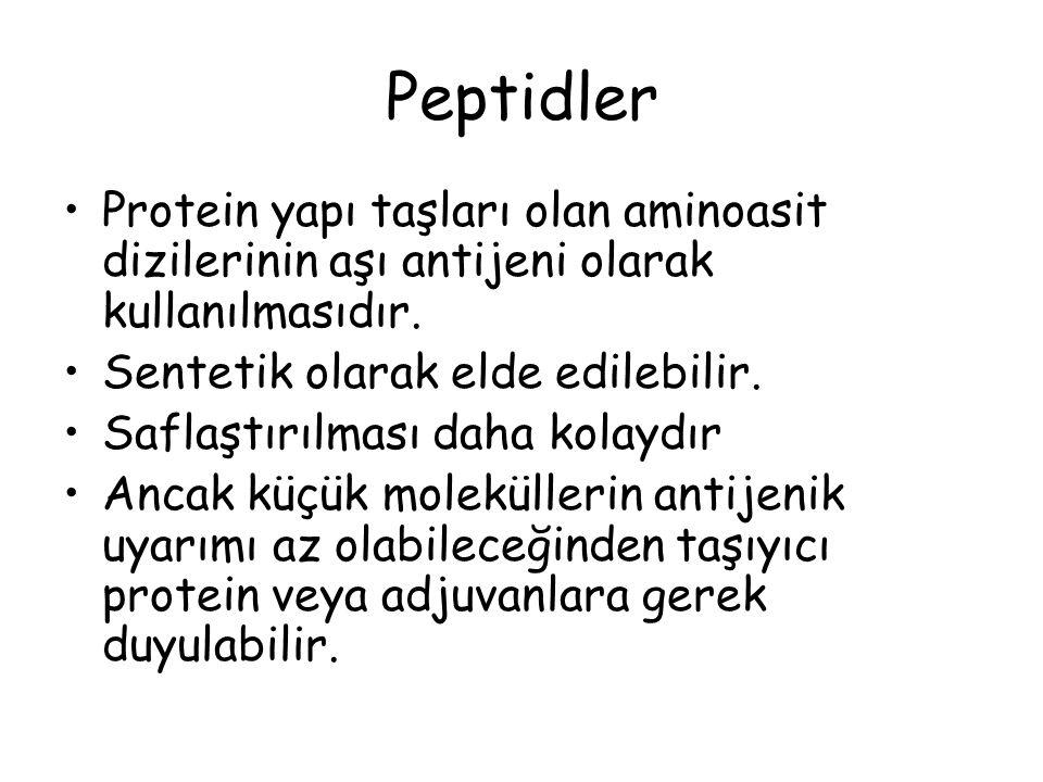 Peptidler Protein yapı taşları olan aminoasit dizilerinin aşı antijeni olarak kullanılmasıdır.