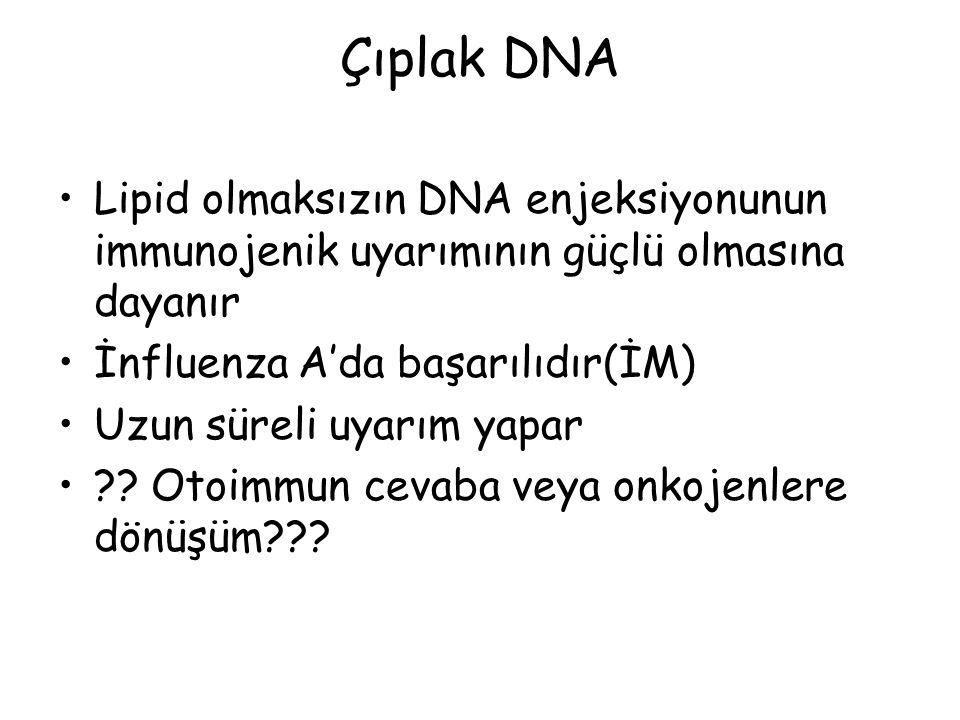 Çıplak DNA Lipid olmaksızın DNA enjeksiyonunun immunojenik uyarımının güçlü olmasına dayanır İnfluenza A'da başarılıdır(İM) Uzun süreli uyarım yapar ?.