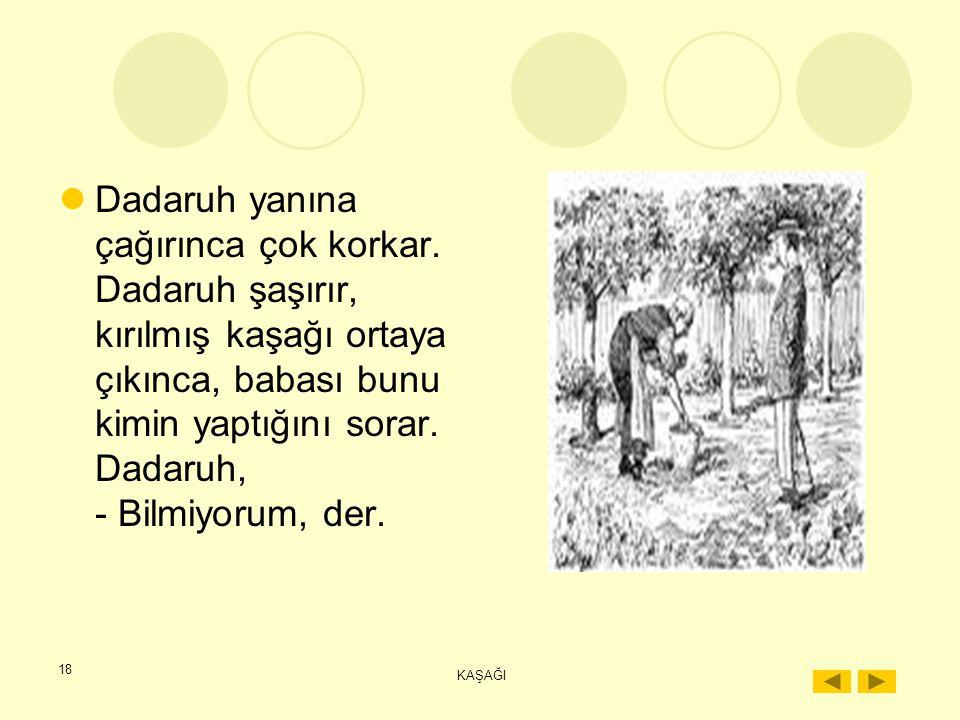 17 KAŞAĞI İstanbul'dan gelen, üstelik Dadaruh'un kullanmaya kıyamadığı bu güzel kaşağıyı ezip, parçalar. Sonra yalağın içine atar. Babası çeşmeye baka