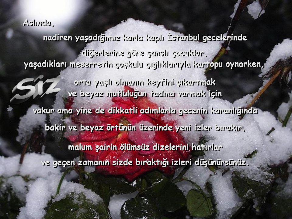 Aslında, Aslında, nadiren yaşadığımız karla kaplı İstanbul gecelerinde nadiren yaşadığımız karla kaplı İstanbul gecelerinde diğerlerine göre şanslı ço