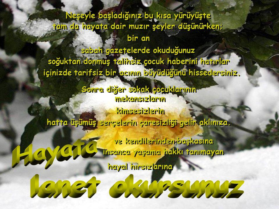 İstanbul'a kar yağmıştır.İstanbul'a kar yağmıştır.