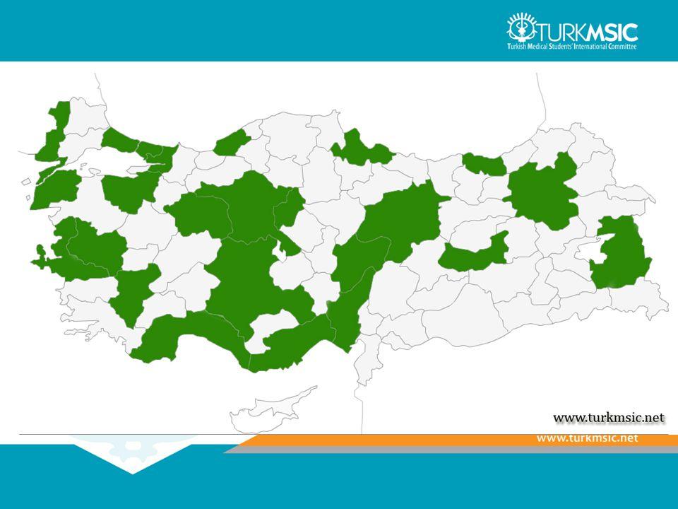 Alt Komiteler.TurkMSIC'ın ana çalışma alanlarında faaliyet gösterirler.