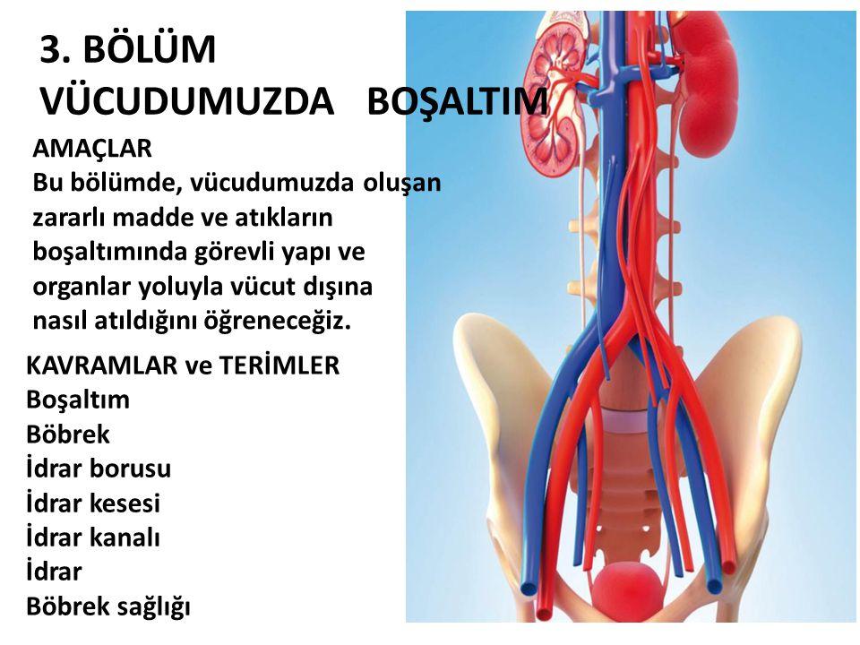 3. BÖLÜM VÜCUDUMUZDA BOŞALTIM AMAÇLAR Bu bölümde, vücudumuzda oluşan zararlı madde ve atıkların boşaltımında görevli yapı ve organlar yoluyla vücut dı