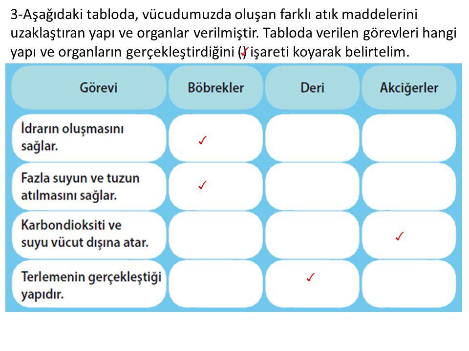 3-Aşağıdaki tabloda, vücudumuzda oluşan farklı atık maddelerini uzaklaştıran yapı ve organlar verilmiştir. Tabloda verilen görevleri hangi yapı ve org
