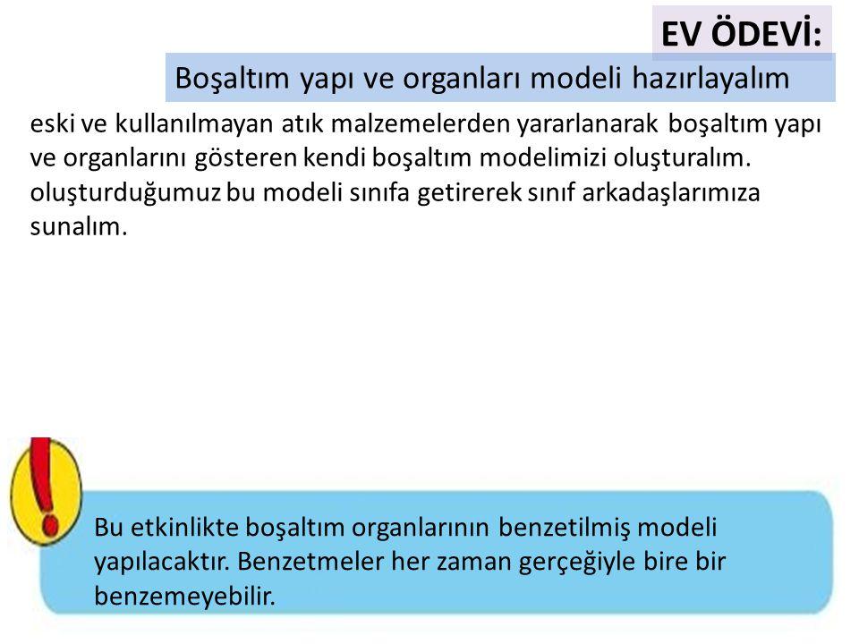 EV ÖDEVİ: Boşaltım yapı ve organları modeli hazırlayalım eski ve kullanılmayan atık malzemelerden yararlanarak boşaltım yapı ve organlarını gösteren k