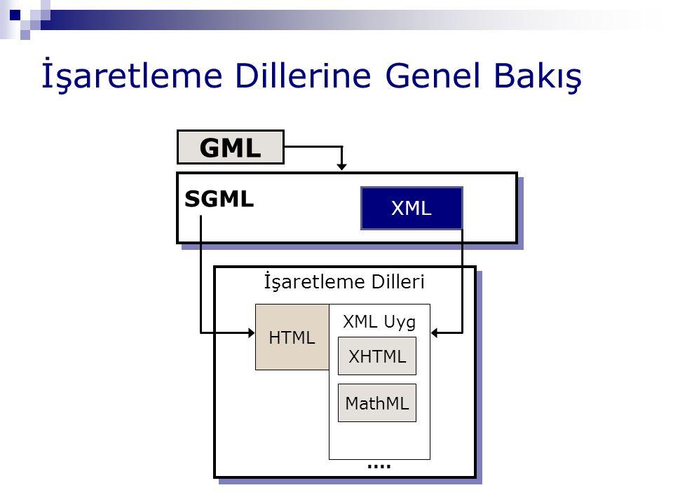 SGML GML'in ANSI tarafından geliştirilmesiyle ortaya çıkmıştır Temel bir sözdizimi tanımlar ve bunu kullanarak kendi elemanlarınızı tanımlamanıza izin verir Havacılık ve otomobil endüstrisinde yer alan büyük kurumlarca kullanılmıştır SGML çok güçlü bir dil olmasına rağmen, karmaşık yapısı ve yüksek uygulama geliştirme maliyetinden dolayı, Internet tabanlı uygulamalarda, özellikle hızlı ve kolay web yayınlarında tercih edilmemiştir.
