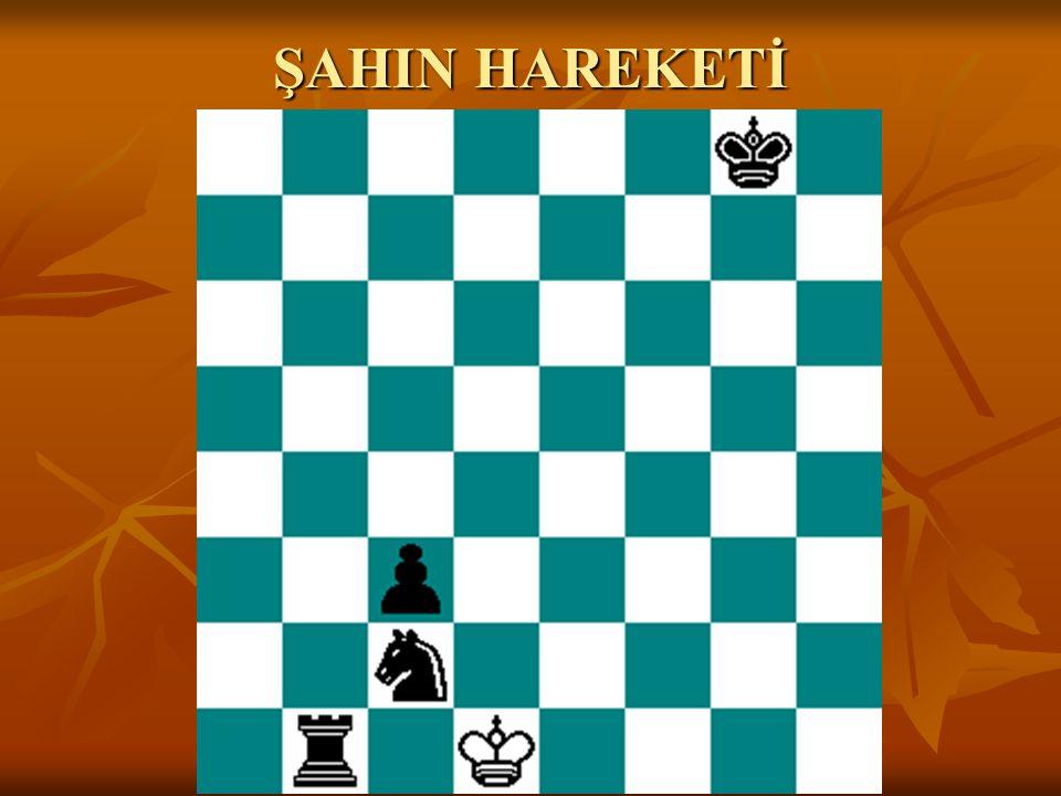 ŞAHIN HAREKETİ