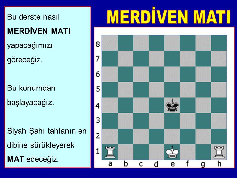 12. Son olarak. Son 500 yılda, dünyanın en iyi oyuncuları satranca en iyi şekilde nasıl başlanacağını araştırmışlardır. Bu uzmanlar BİNLERCE kitap yaz