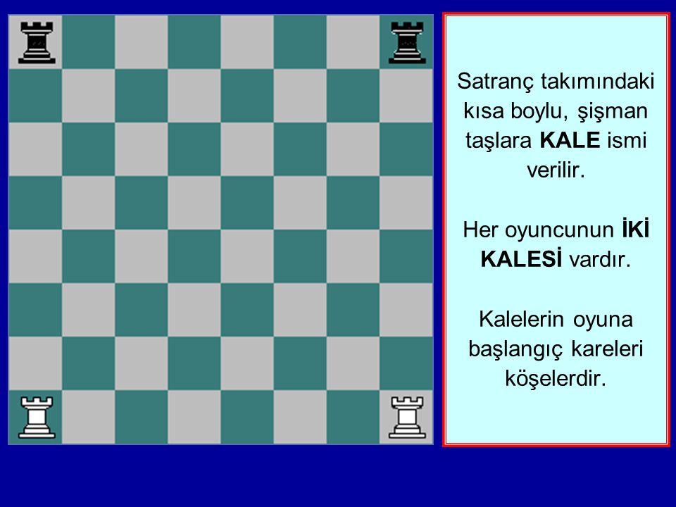 Bir satranç oyuncusu bir ordunun komutanı gibidir. Herkesin 16 askeri vardır. Bir oyuncu Beyaz taşların komutanıdır. Diğer oyuncu da siyah taşların ko