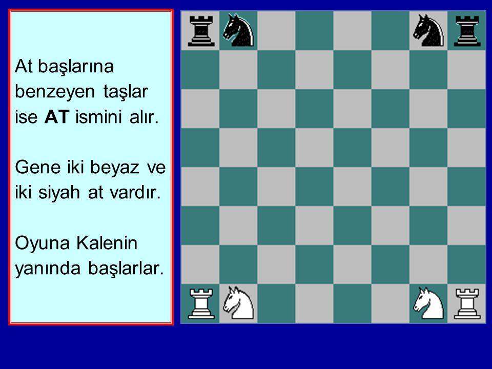 Satranç takımındaki kısa boylu, şişman taşlara KALE ismi verilir. Her oyuncunun İKİ KALESİ vardır. Kalelerin oyuna başlangıç kareleri köşelerdir.
