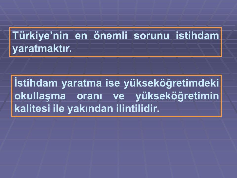 Türkiye'nin en önemli sorunu istihdam yaratmaktır.