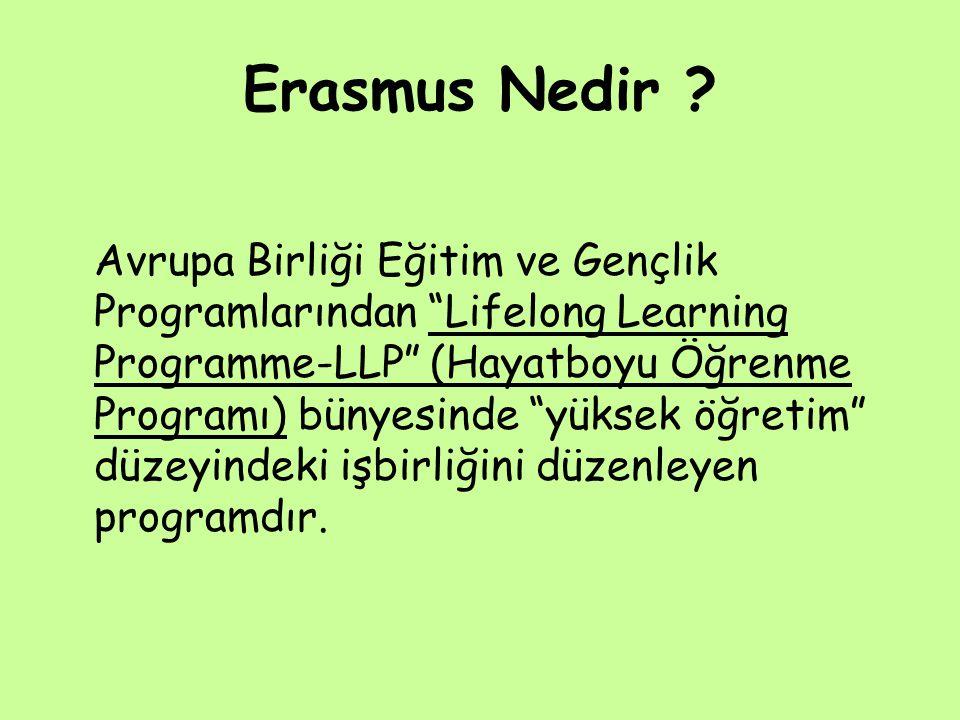 Erasmus Nedir .