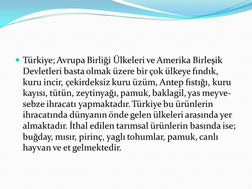 Türkiye; Avrupa Birliği Ülkeleri ve Amerika Birleşik Devletleri basta olmak üzere bir çok ülkeye fındık, kuru incir, çekirdeksiz kuru üzüm, Antep fıst