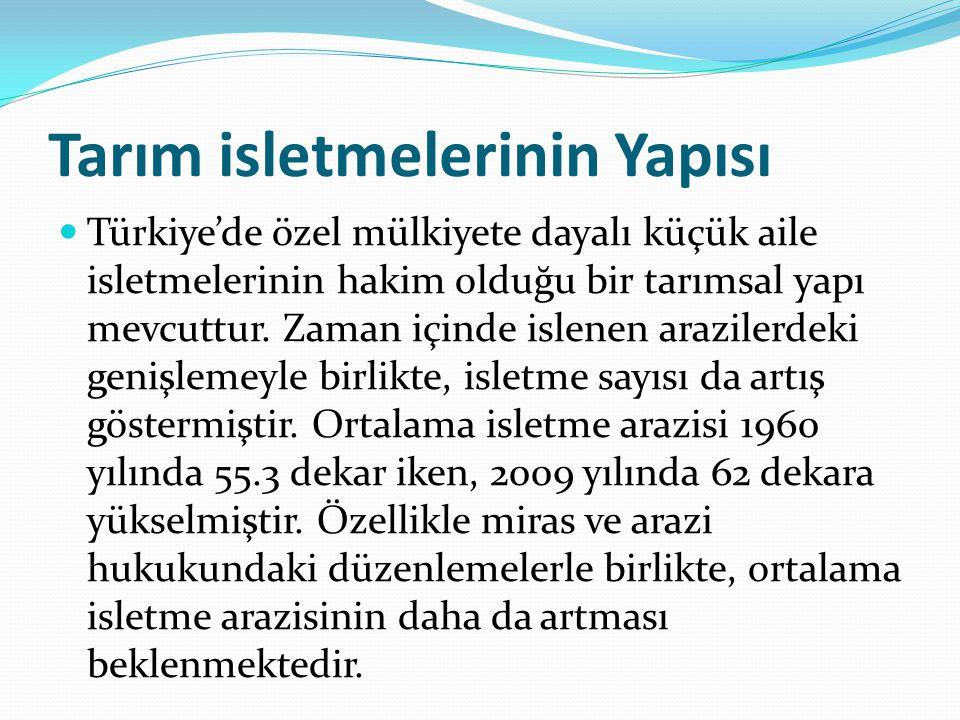 Tarım isletmelerinin Yapısı Türkiye'de özel mülkiyete dayalı küçük aile isletmelerinin hakim olduğu bir tarımsal yapı mevcuttur. Zaman içinde islenen