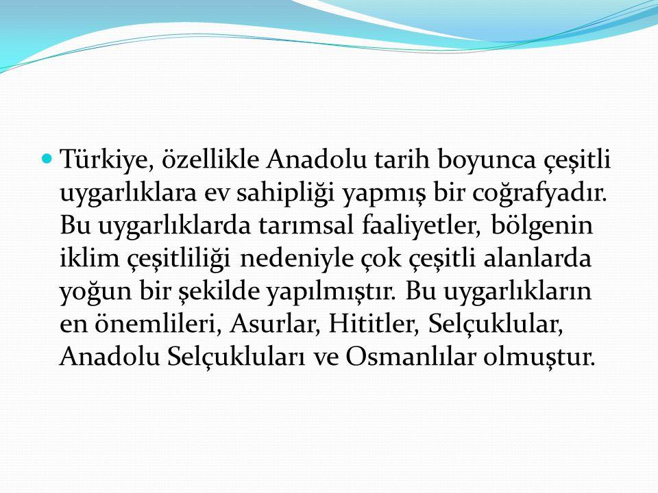 Türkiye, özellikle Anadolu tarih boyunca çeşitli uygarlıklara ev sahipliği yapmış bir coğrafyadır. Bu uygarlıklarda tarımsal faaliyetler, bölgenin ikl