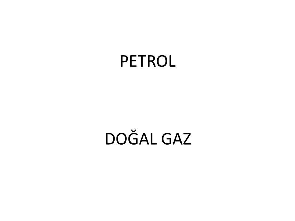 PETROL DOĞAL GAZ