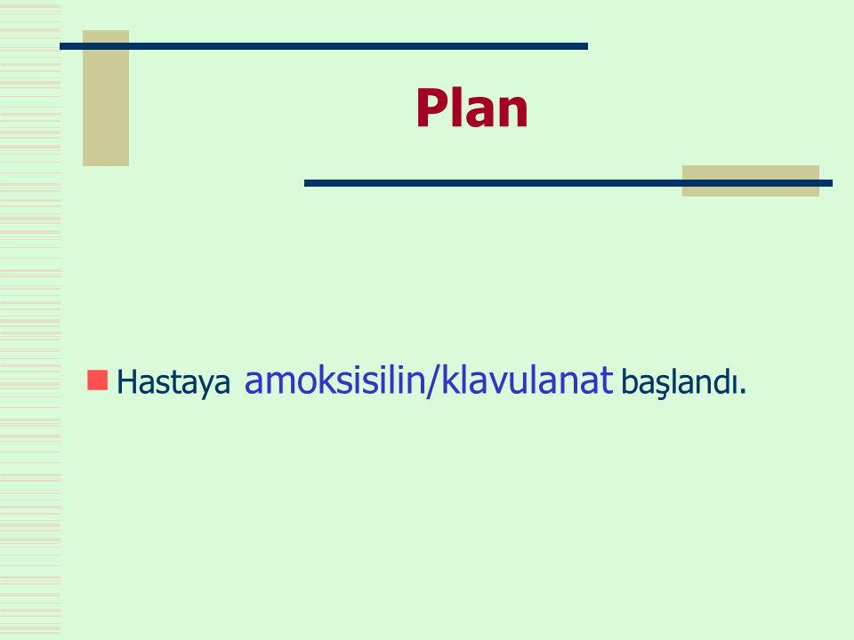 Plan  Hastaya amoksisilin/klavulanat başlandı.