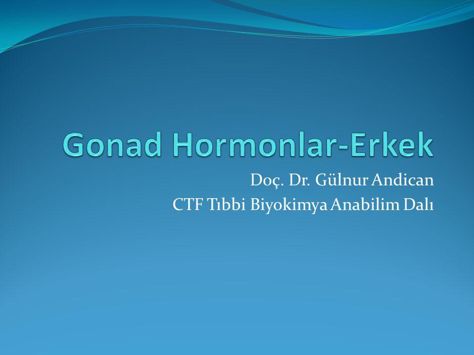 Doç. Dr. Gülnur Andican CTF Tıbbi Biyokimya Anabilim Dalı