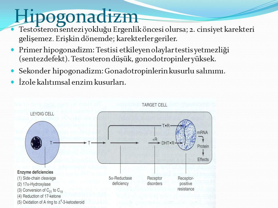 Hipogonadizm Testosteron sentezi yokluğu Ergenlik öncesi olursa; 2. cinsiyet karekteri gelişemez. Erişkin dönemde; karekterler geriler. Primer hipogon