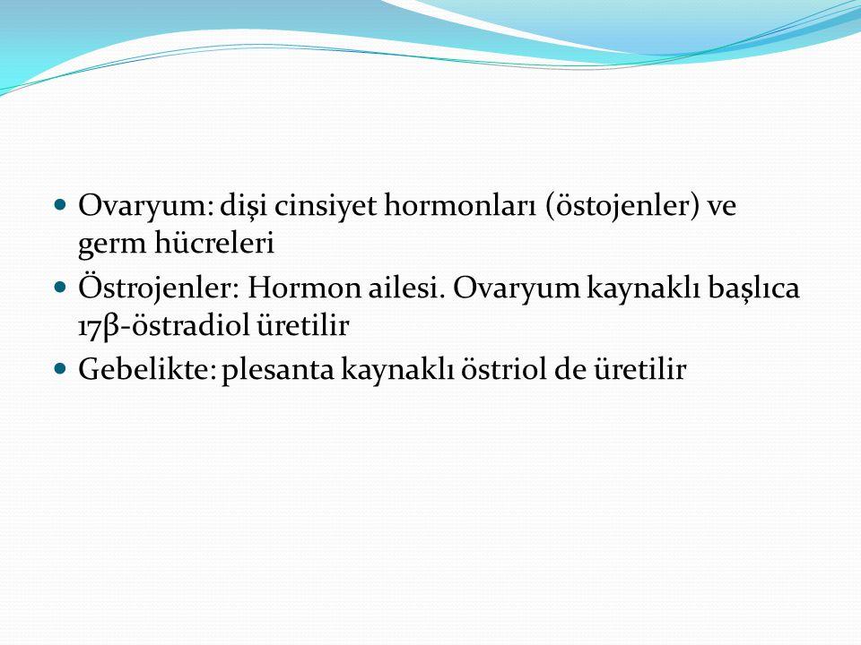 Ovaryum: dişi cinsiyet hormonları (östojenler) ve germ hücreleri Östrojenler: Hormon ailesi. Ovaryum kaynaklı başlıca 17β-östradiol üretilir Gebelikte