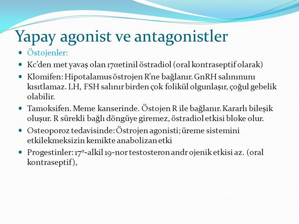 Yapay agonist ve antagonistler Östojenler: Kc'den met yavaş olan 17αetinil östradiol (oral kontraseptif olarak) Klomifen: Hipotalamus östrojen R'ne ba