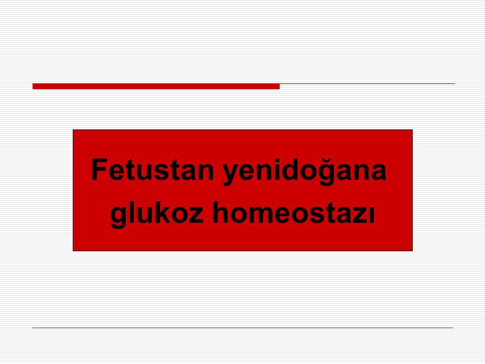 Fetustan yenidoğana glukoz homeostazı
