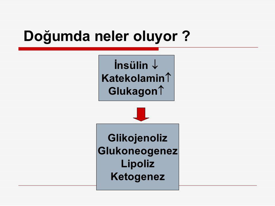 Tedavi Altta yatan hastalık var mı .Evet Tedavi et Hayır Glukoz infüzyonu > 10 mg/kg/dk .