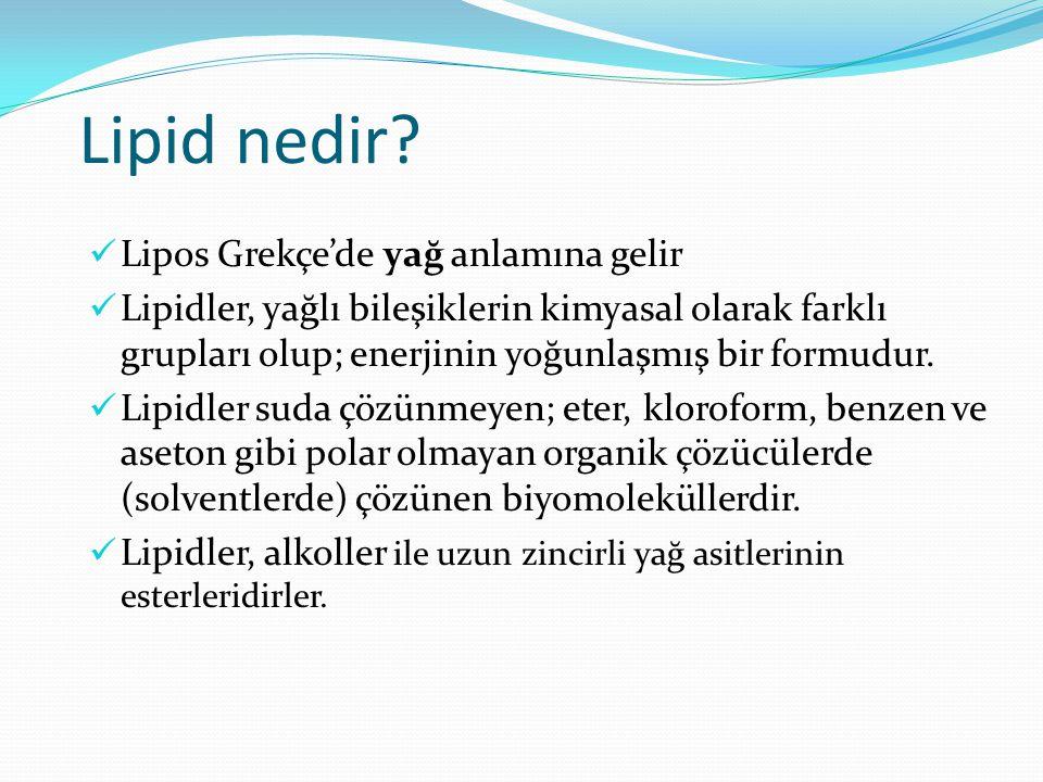 Başlıca lipidler Trigliseridler (triaçilgliserol) Fosfodiasilgliserol Sfingolipidler Glikolipidler Prostaglandinler Kolesterol Steroid hormonlar