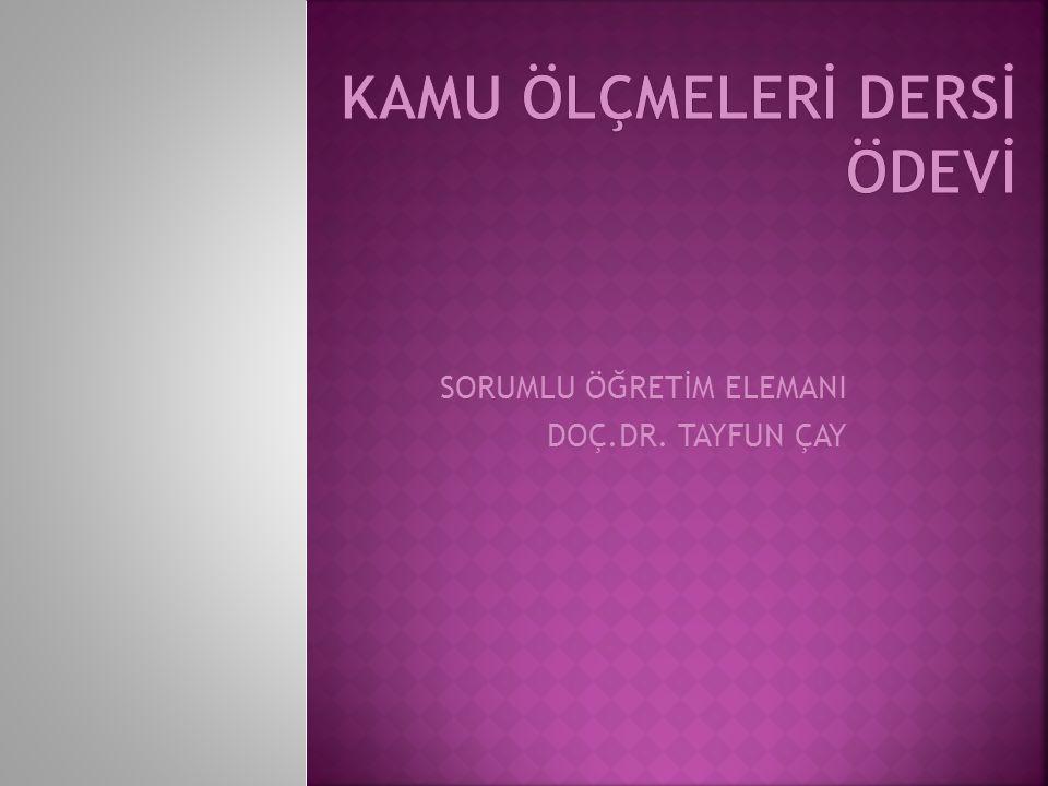 SORUMLU ÖĞRETİM ELEMANI DOÇ.DR. TAYFUN ÇAY
