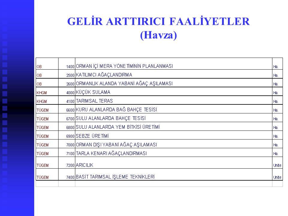 GELİR ARTTIRICI FAALİYETLER (Havza)