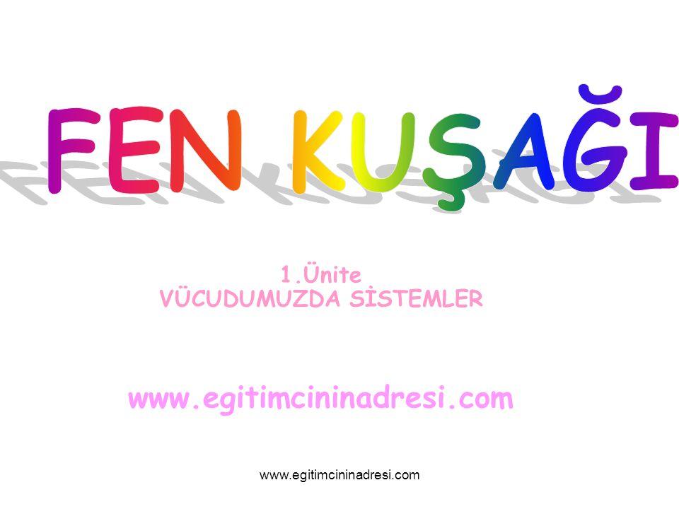 1.Ünite VÜCUDUMUZDA SİSTEMLER www.egitimcininadresi.com