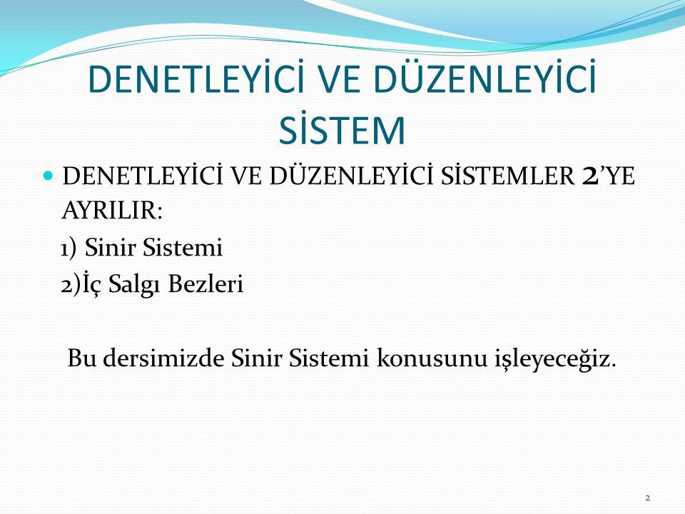 DENETLEYİCİ VE DÜZENLEYİCİ SİSTEM DENETLEYİCİ VE DÜZENLEYİCİ SİSTEMLER 2 'YE AYRILIR: 1) Sinir Sistemi 2)İç Salgı Bezleri Bu dersimizde Sinir Sistemi