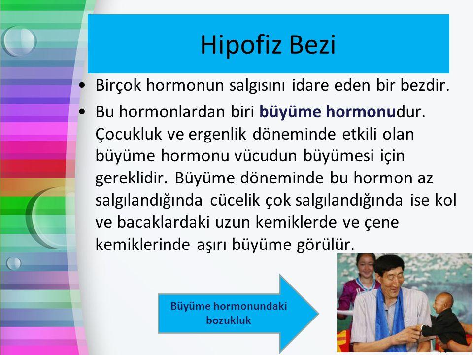 Hipofiz Bezi Birçok hormonun salgısını idare eden bir bezdir. Bu hormonlardan biri büyüme hormonudur. Çocukluk ve ergenlik döneminde etkili olan büyüm