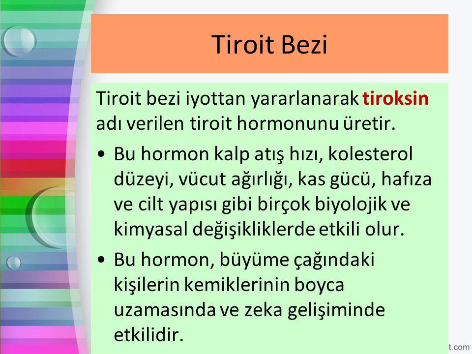Tiroit bezi iyottan yararlanarak tiroksin adı verilen tiroit hormonunu üretir. Bu hormon kalp atış hızı, kolesterol düzeyi, vücut ağırlığı, kas gücü,