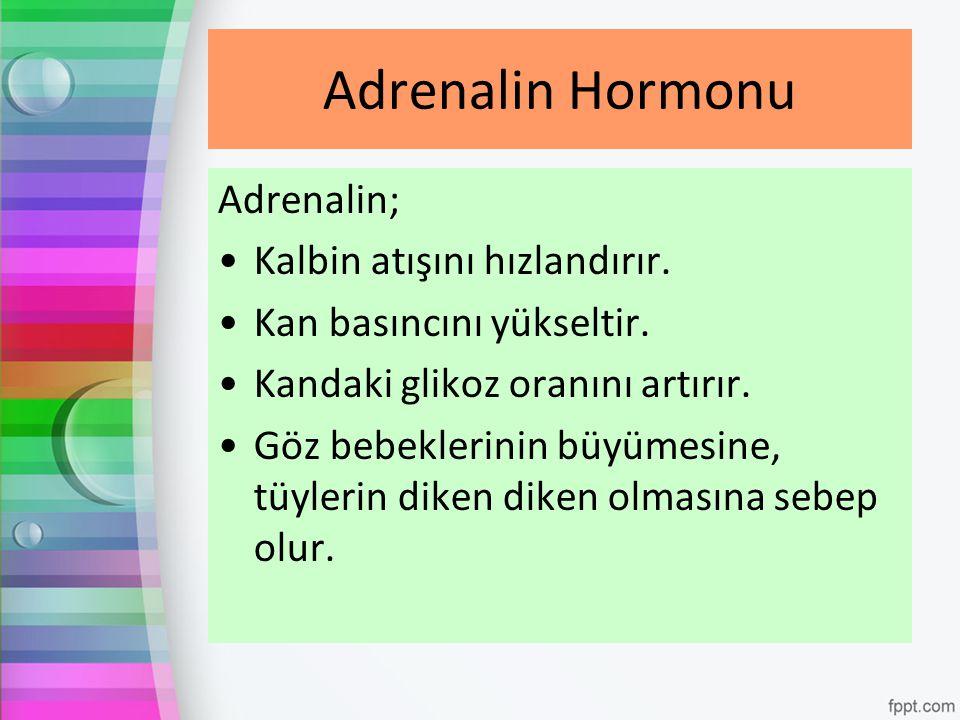 Adrenalin; Kalbin atışını hızlandırır. Kan basıncını yükseltir. Kandaki glikoz oranını artırır. Göz bebeklerinin büyümesine, tüylerin diken diken olma