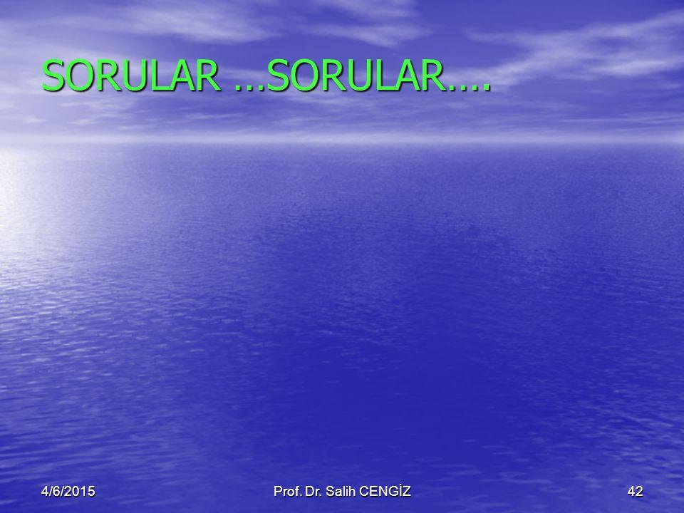 SORULAR …SORULAR…. 4/6/2015Prof. Dr. Salih CENGİZ42