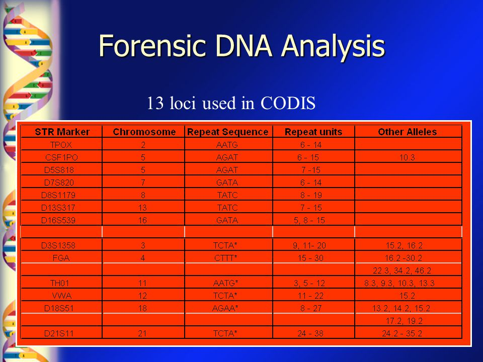 Forensic DNA Analysis 13 loci used in CODIS