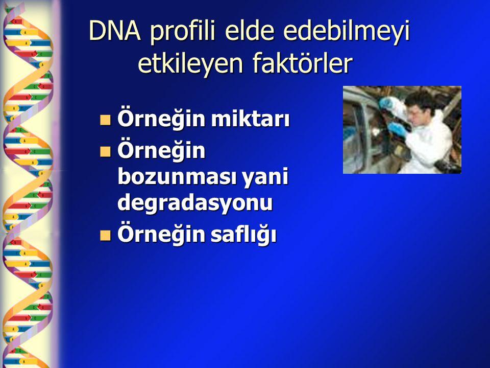 DNA profili elde edebilmeyi etkileyen faktörler DNA profili elde edebilmeyi etkileyen faktörler Örneğin miktarı Örneğin miktarı Örneğin bozunması yani